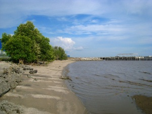 The rivermouth meets a sandy beach,with mangroves lining the beach