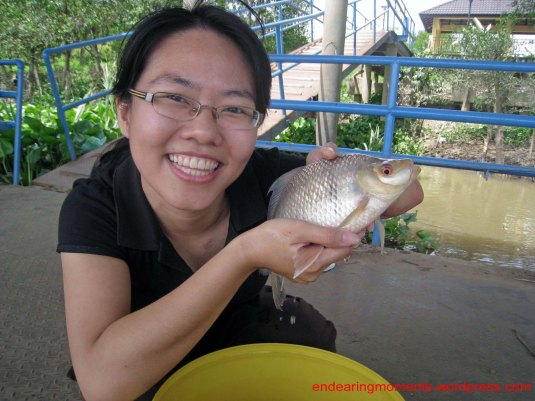 Info :a carp species that inhabits big rivers only in Perak n Pahang...big muscular body,purplish tinted scales n red eye makes it a wonderful fish to see n catch ...