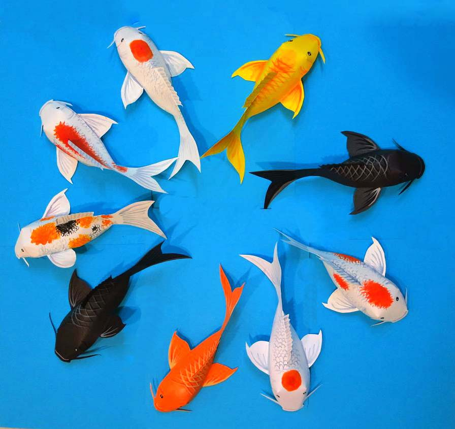 Top View of all our dear fishes & Fold Some Fun into this Chinese New Year Decoration with Koi Fish ...